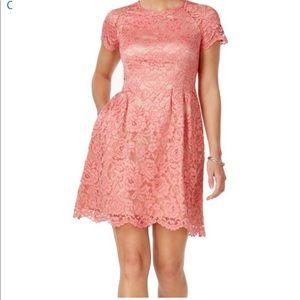 Vince Camuto Pink Floral Lace Scallop A-line Dress